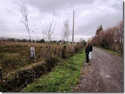 electrificación rural (9)