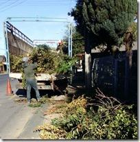 FOTO operativo escombros y ramas