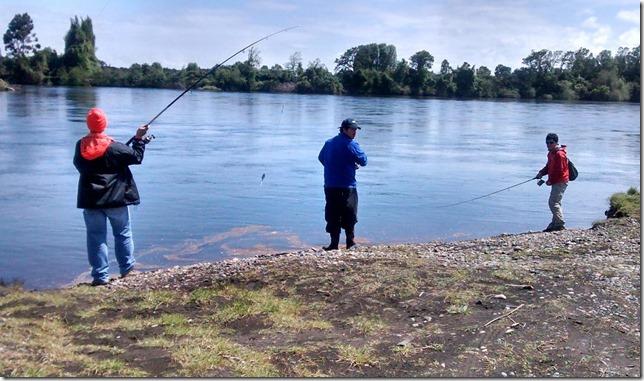 pescarecreativa1