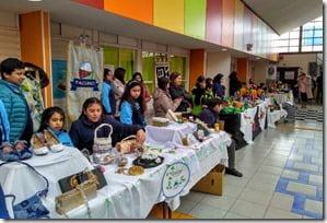 Encuentro Ambiental en Paillaco (1)