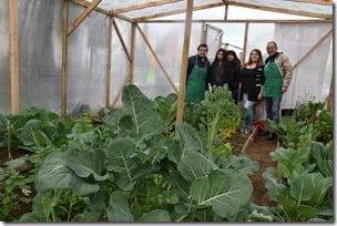 Huertos Urbanos un incentivo para el cultivo familiar (2)