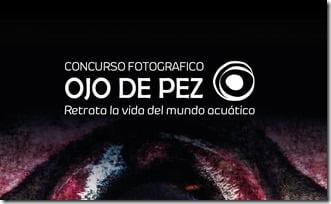 ojo-de-pez-2019-v3-1 - copia (2)