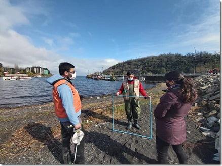 Lago Villarrica investigación