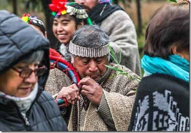 Concejo Municipal aprueba subvención a comunidades indígenas para celebración We Tripantu
