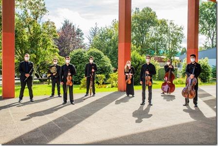 Orquesta de Cámara de Valdivia se presentará en Villarrica (2)